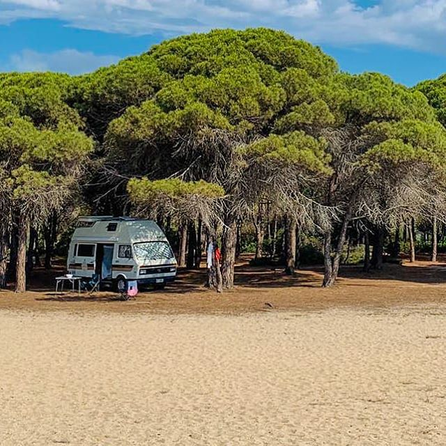 Campervan bookings